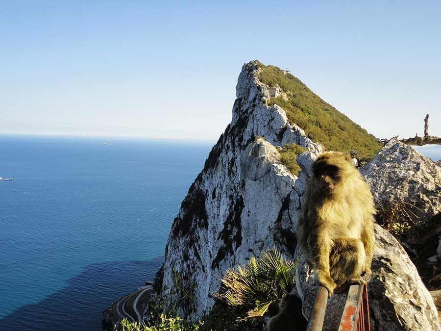 Que ver en el Penon de Gibraltar - Tusguiasdeviaje