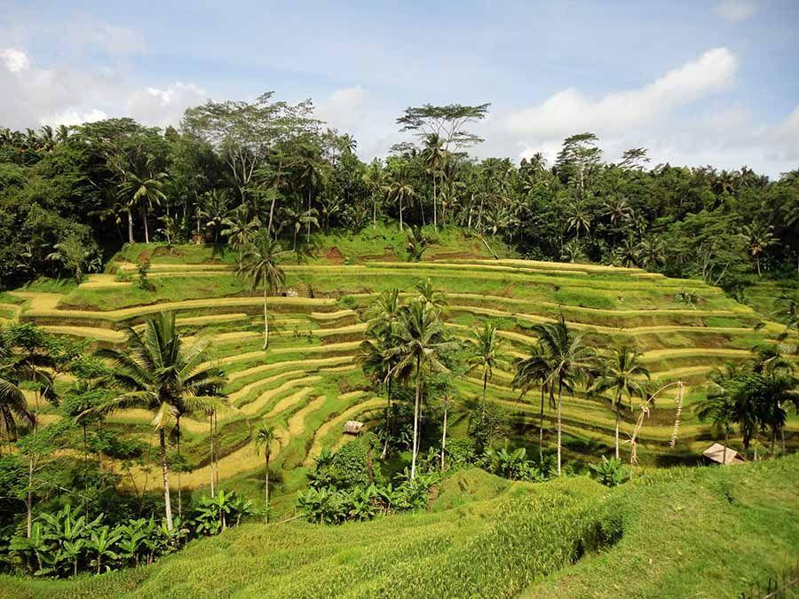 Que ver en Bali - Tusguiasdeviaje