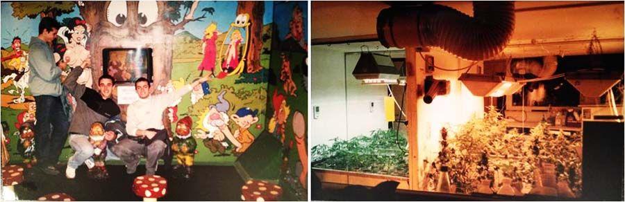 Visitar el museo de la marihuana en Amsterdam - Tusguiasdeviaje