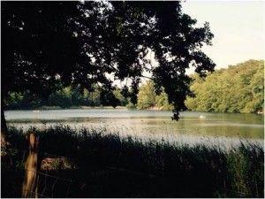 Krumme Lanke - Parques de Berlín