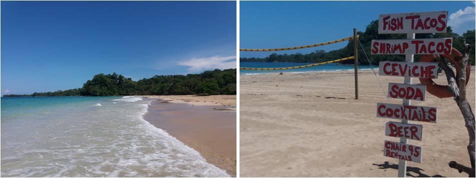 Playa de Red Frog en Bocas del Toro