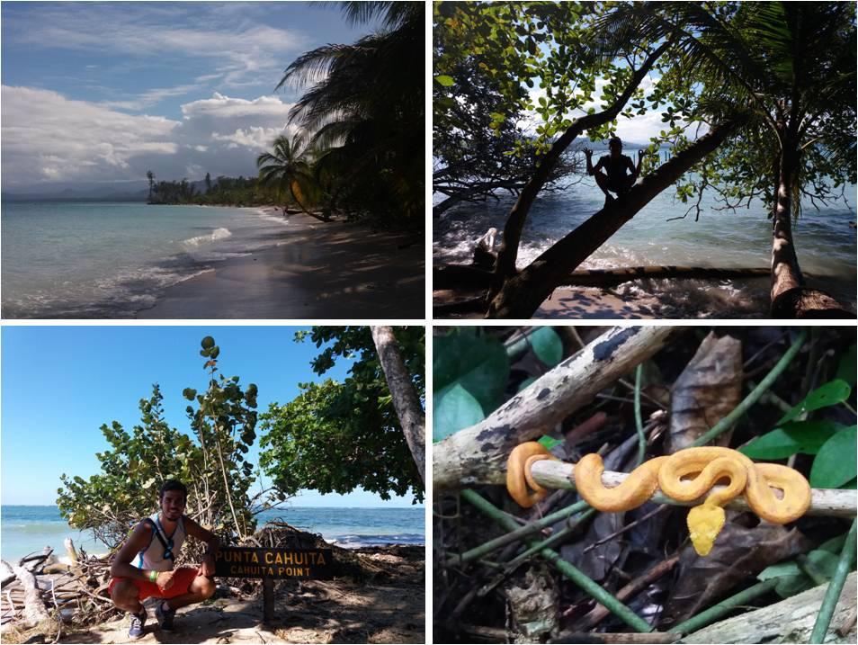 Qué ver en Costa Rica - Cahuita