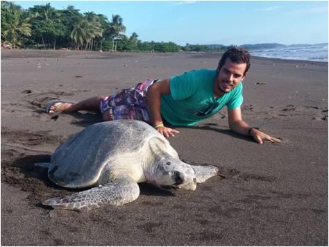 Turismo en Costa Rica - Tortugas