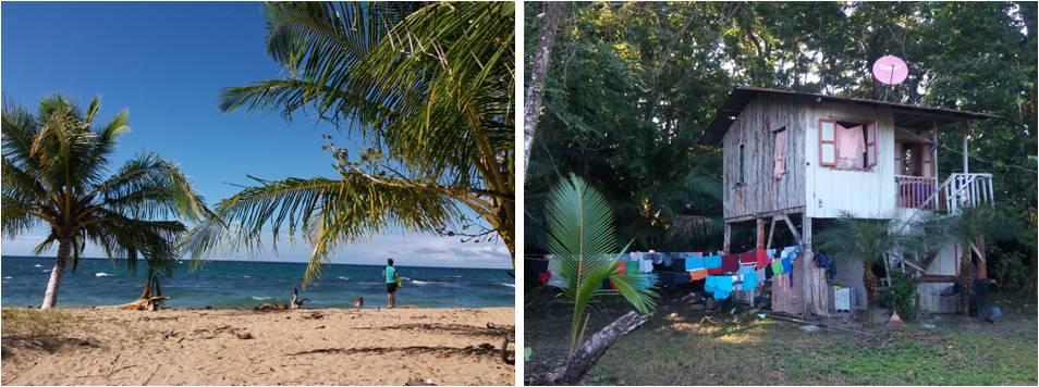 Mejores playas de Puerto Viejo en Costa Rica - Punta Uva y Manzanillo