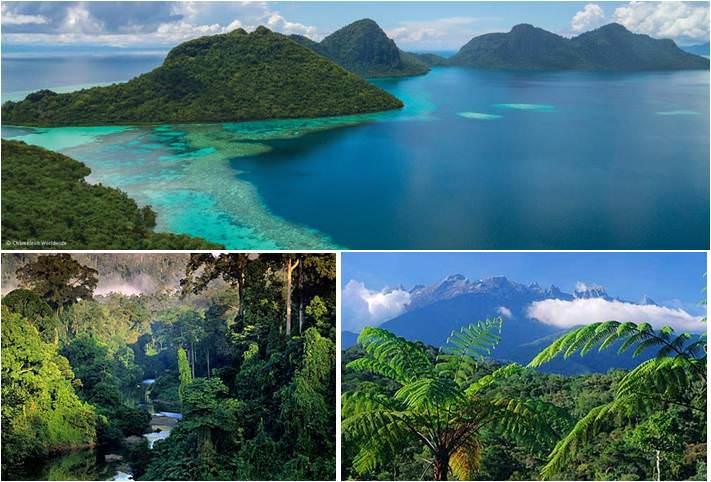 Que ver en Borneo