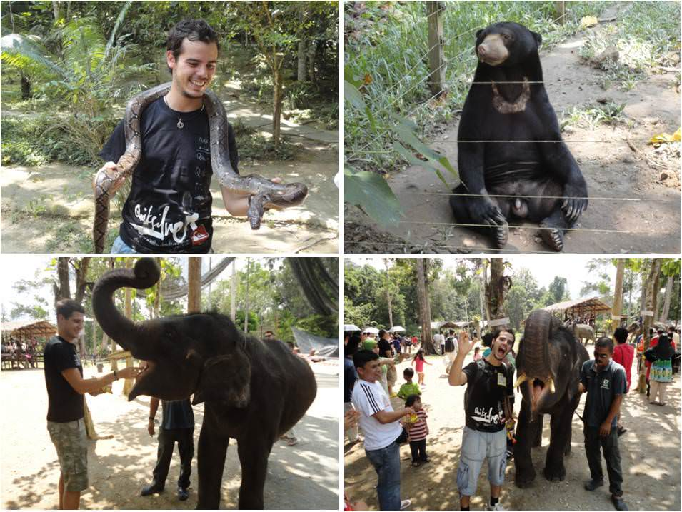 que ver en Taman Menara - Malasia