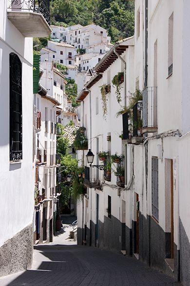 Cazorla Calle
