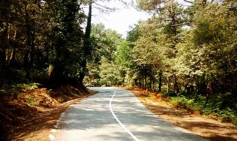 Carretera sobre el Miño