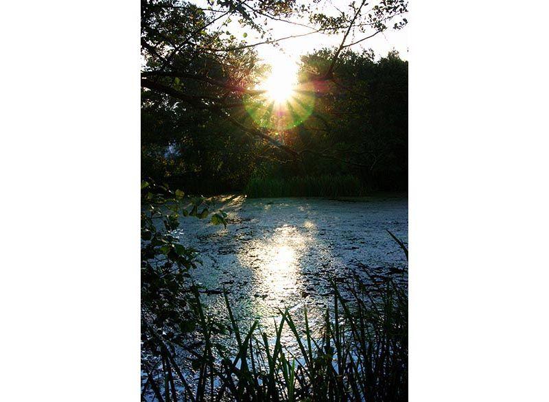 Lagoa de Fonmiña