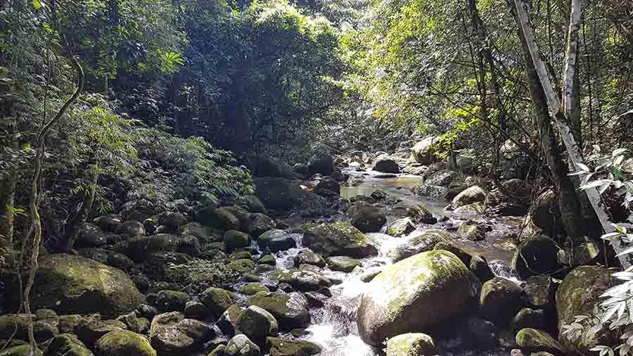 Excursiones en Ilha Grande - Brasil