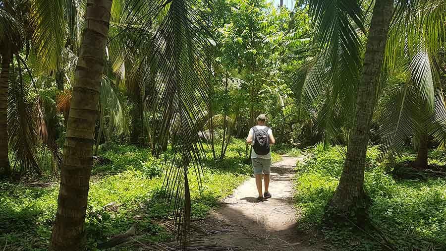 Excursión al Parque Tayrona en Santa Marta