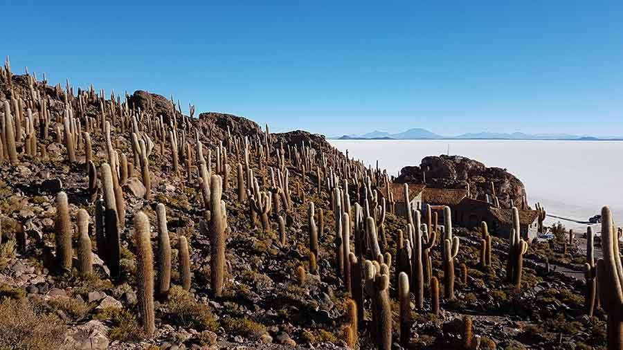 Viajar a Bolivia - Salar de Uyuni