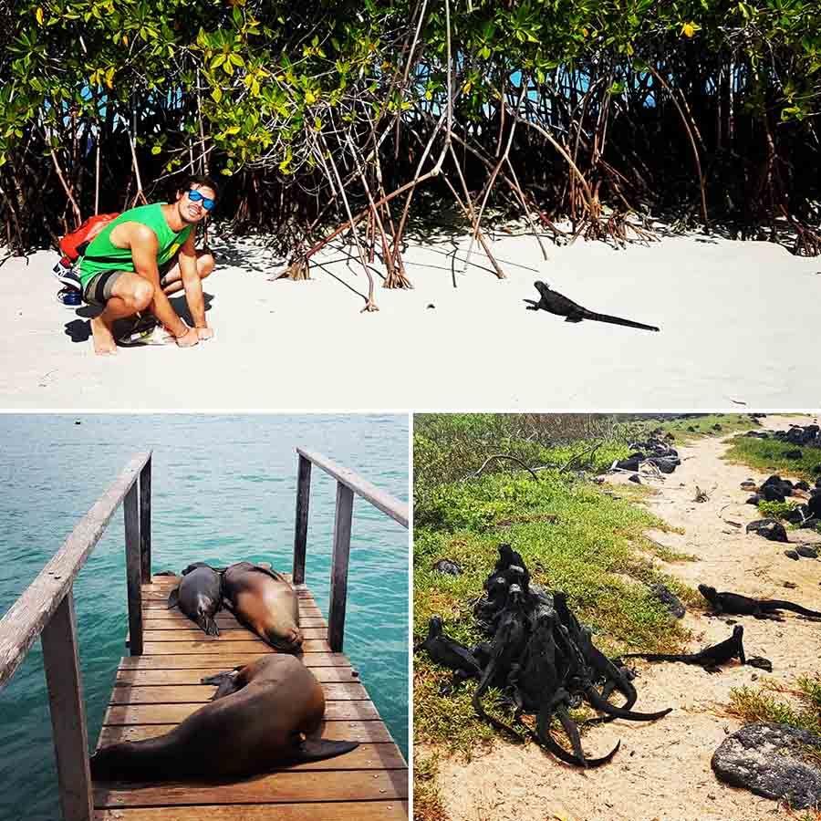 Qué hacer en Islas Galápagos - Viaje a Galápagos