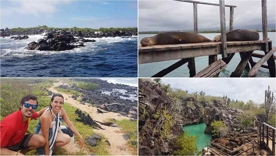 Excursión en Islas Galápagos - Tour de Bahía en Puerto Ayora