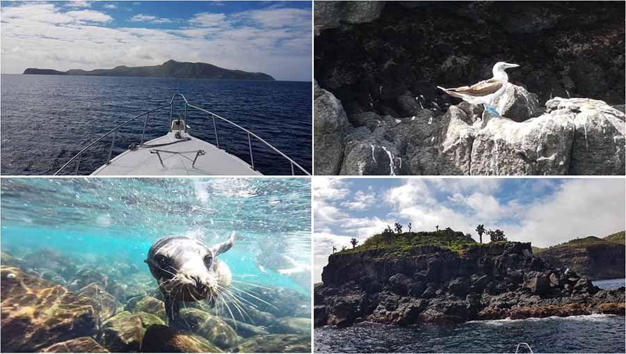 Qué hacer en Islas Galápagos - Excursión a isla de Santa Fe