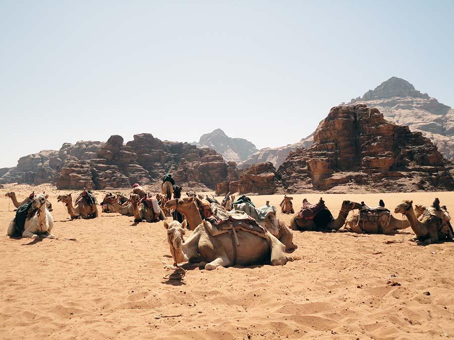 4 - Desierto de Wadi Run (48)M