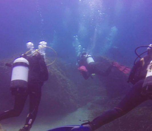 buceo cabo de palos-Islas Hormigas