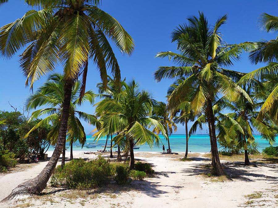 Que ver en Zanzibar