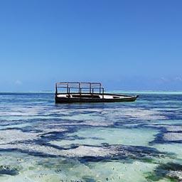 Qué ver en Zanzíbar - Guía de viaje 7 días