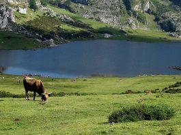 Asturias viajar